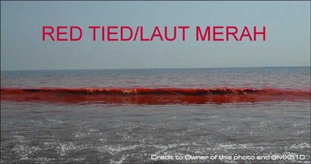 Fenomena Air Laut Berwarna Merah dan sumber sahih.