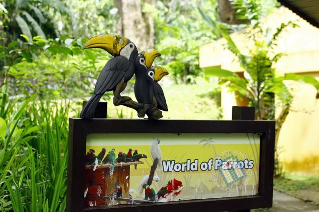 Dalam banyak-banyak keluasan Taman Burung, kandang burung kakak tua paling best.