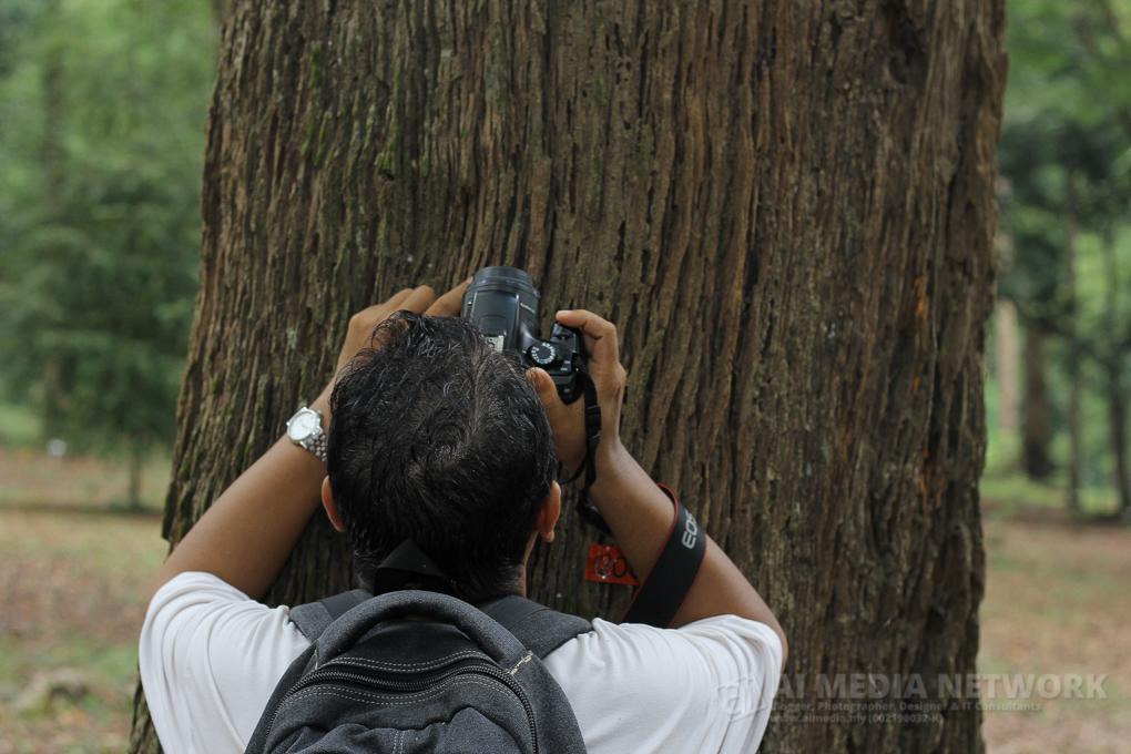 Seorang Jurufoto Pro sedang mengambil pattern kulit pokok dari bawah ke atas... bhahahaha - Azman Ismail