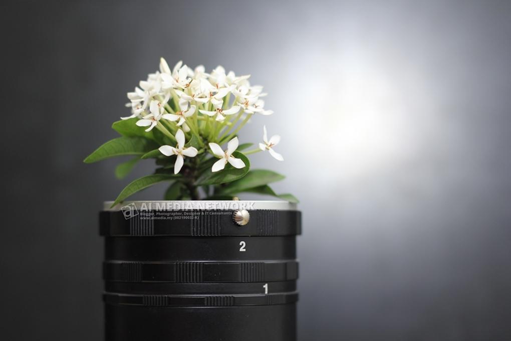 Gambar bunga putih dalam extension tube, berlatarbelakangkan screen komputer.